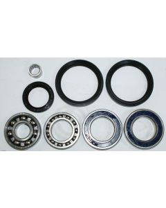Arctic Cat 500 FIS Rear Differential Bearing and Seal Kit