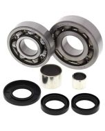 Polaris 500 325 Magnum Xpediition Front Differential Bearing and Seal Kit