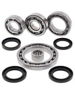 Differential Bearing and Seal Kit Rear To Fit Suzuki LT-A LT-F 500 01-02 Models