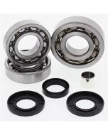 Polaris 325 500 Magnum Front Differential Bearing and Seal Kit